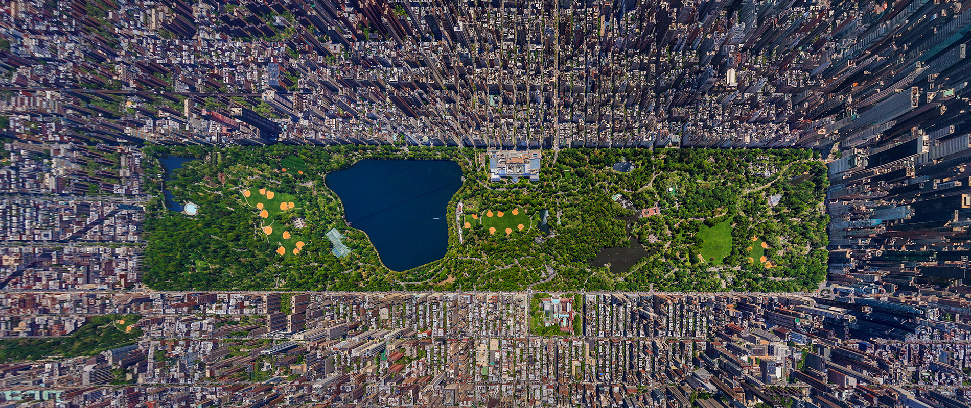Central Park, The Green Lung of NYC