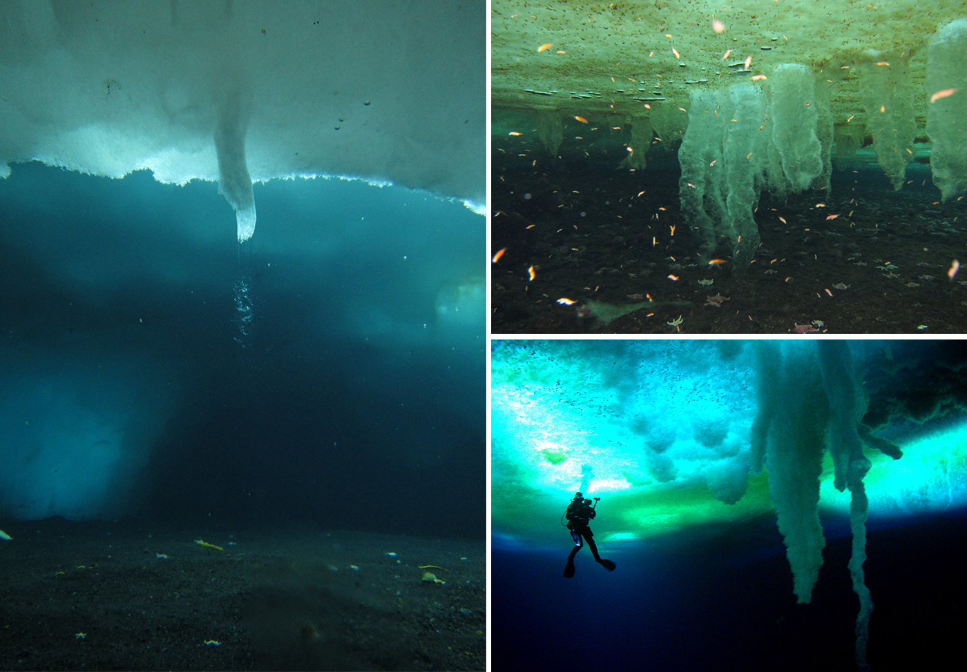 Brinicle-Little-Razorback-Island-Antartide-3