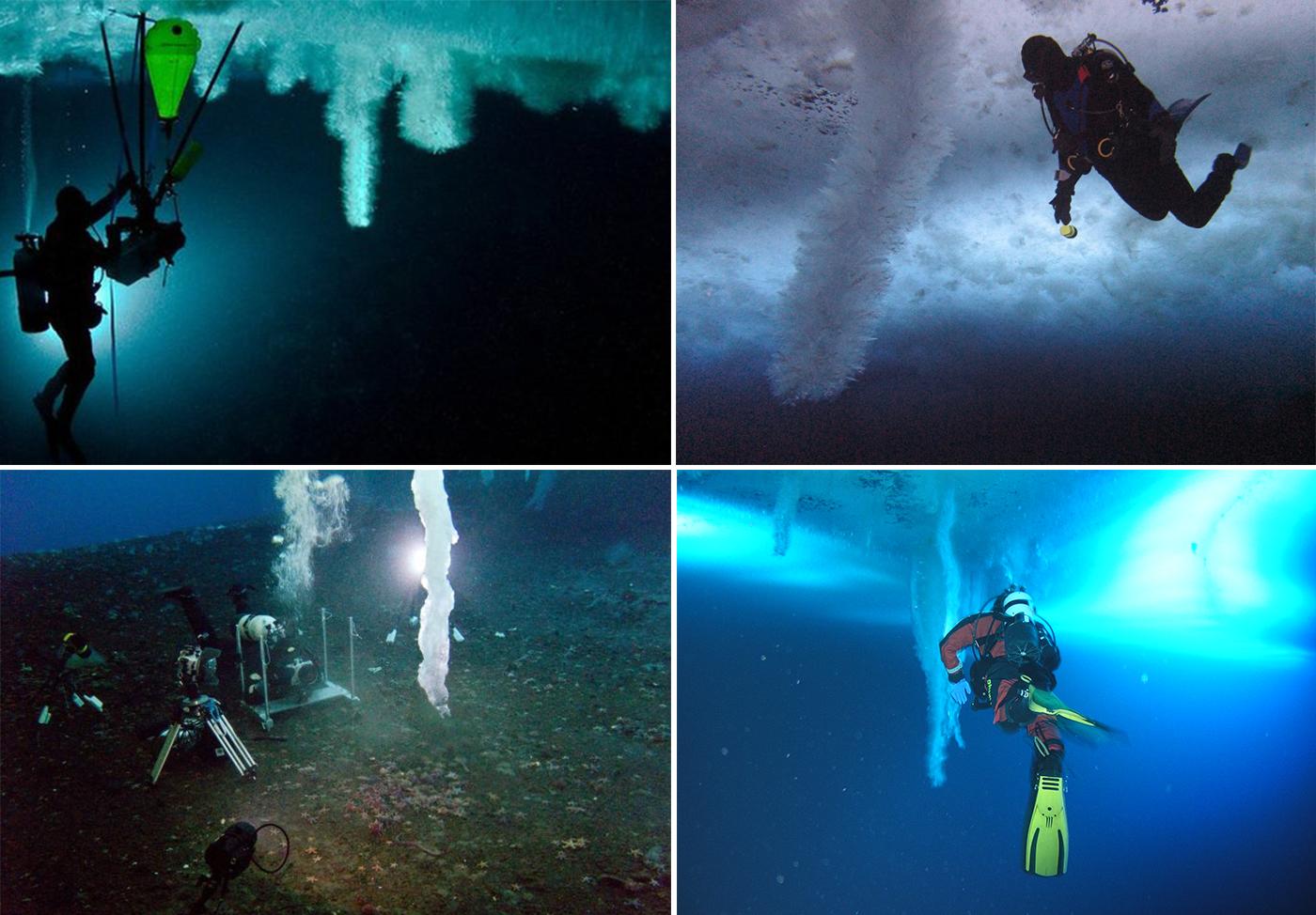 Brinicle-Little-Razorback-Island-Antartide-4