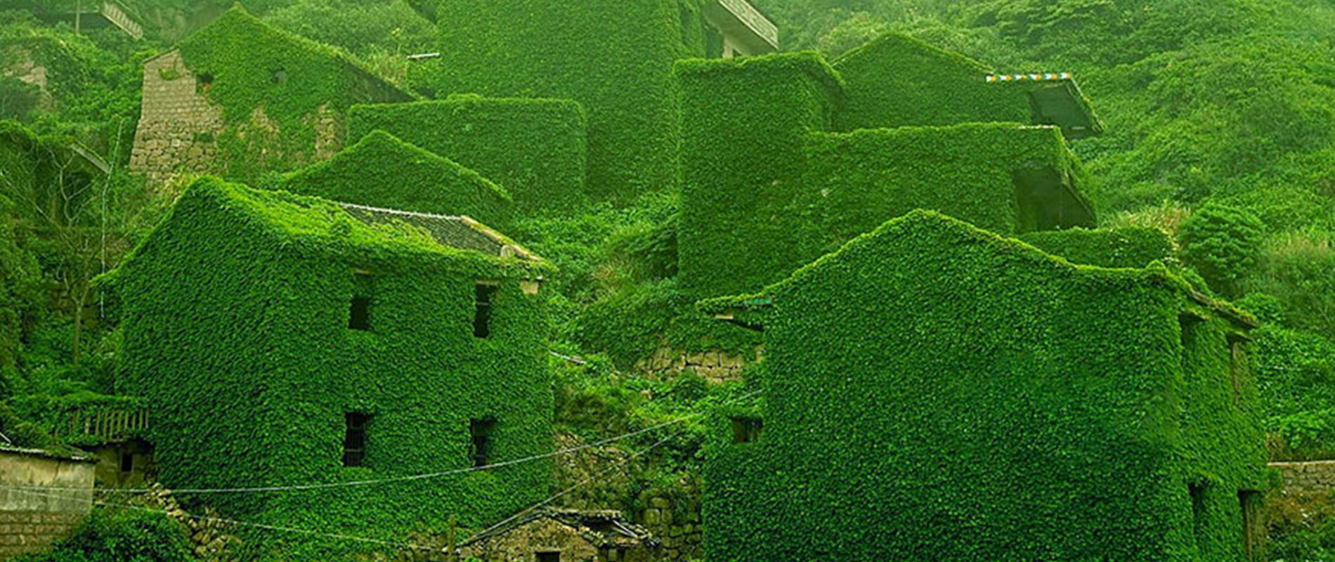 Houtou Wan, il villaggio riconquistato dalla natura