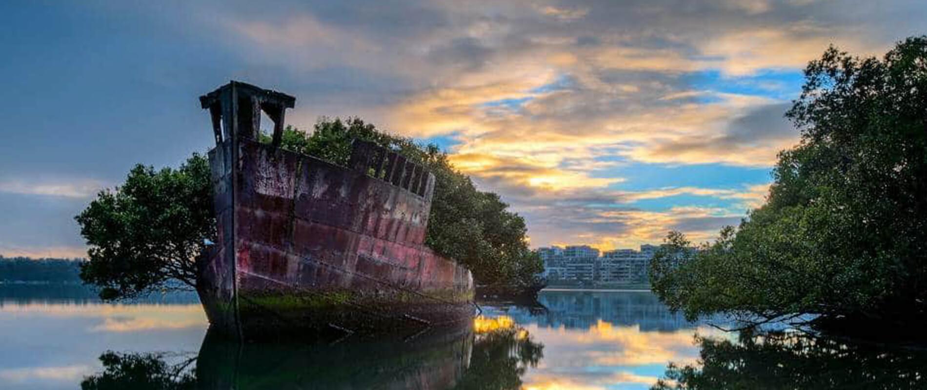 The Floating Forest, la nave da guerra trasformata in un giardino galleggiante