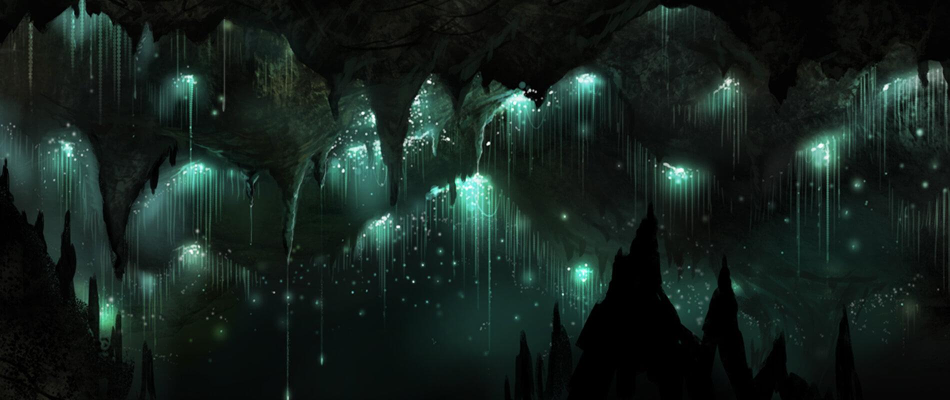 Glowworm Caves, le grotte illuminate da un cielo stellato
