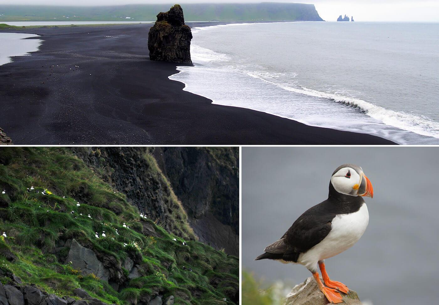 Reynisfjara-Beach-Islanda-3