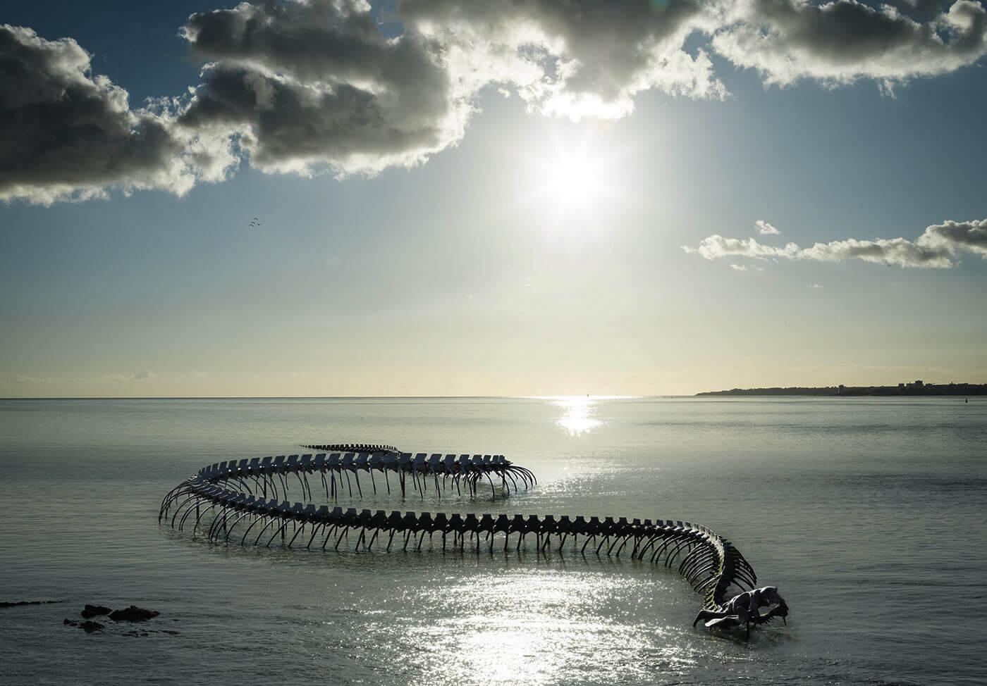 Serpent-d-Ocean-Francia