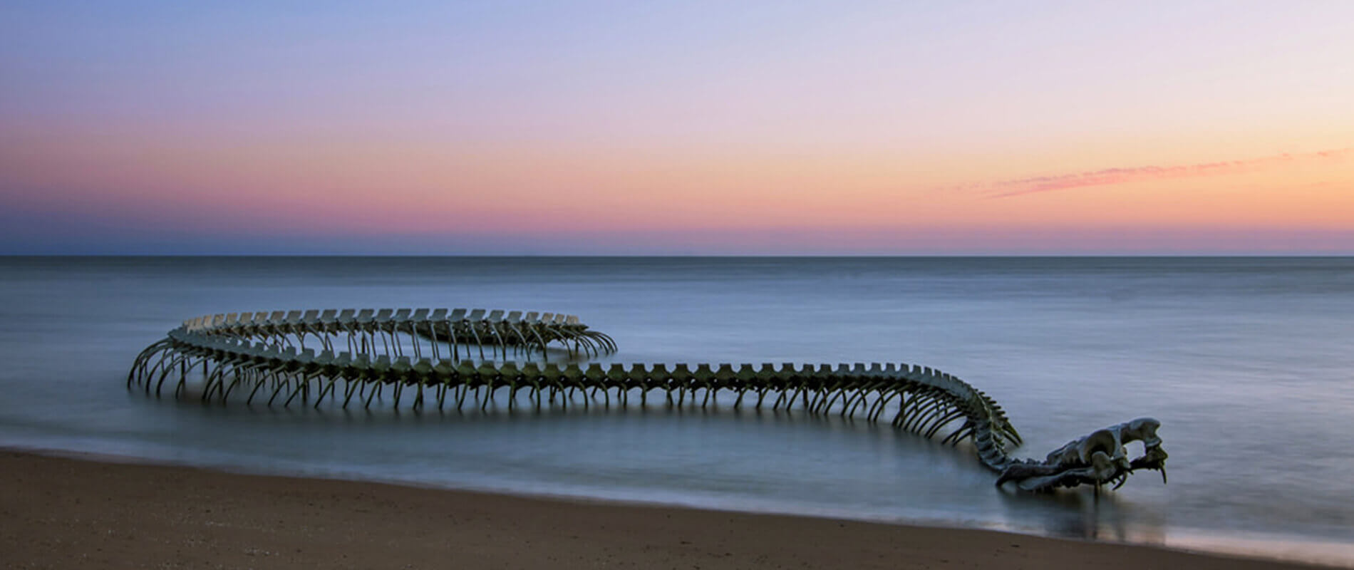 Serpent d'Océan, a Gigantic Snake Skeleton That Plays with the Tides