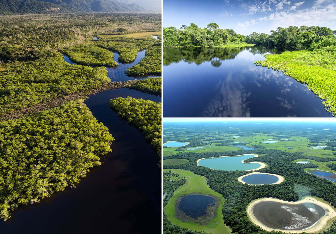 Pantanal-Brasile-2