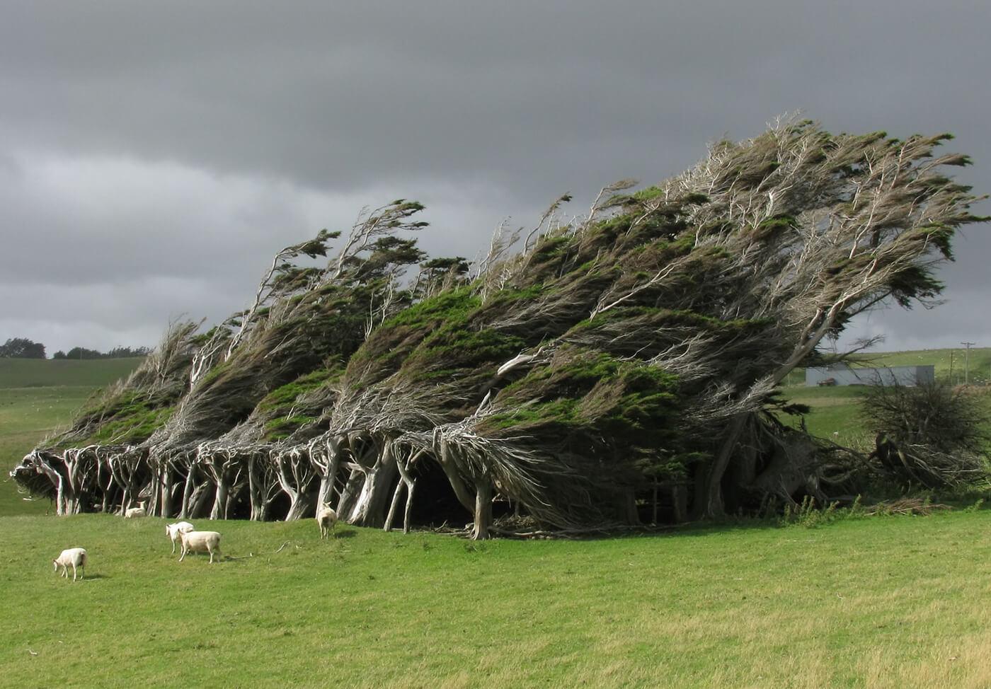 Slope-Point-Nuova-Zelanda
