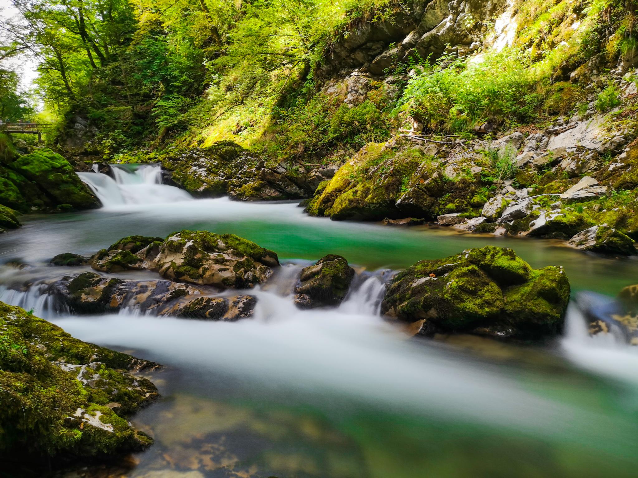 Il verde smeraldo della Slovenia: le Gole di Vintgar