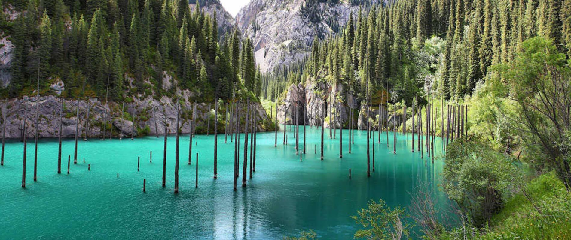 Lago Kaindy, lo specchio d'acqua da cui emergono gli alberi capovolti