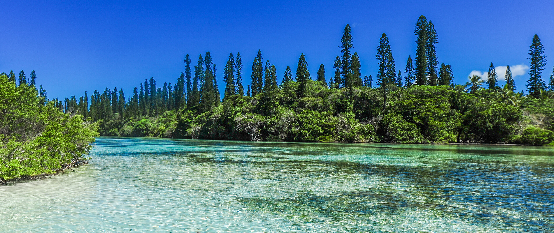 The Isle of Pines, the Precious Pearl of New Caledonia